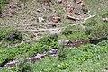 2014 Prowincja Sjunik, Rzeka Szaki (03).jpg