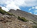 2015.07.11 12.54.20 DSCN2678 - Flickr - andrey zharkikh.jpg