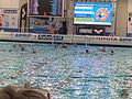 2016 Water Polo Olympic Qialification tournament NED-FRA 23.jpeg