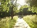 2017-06-19-Elbroich Park DNr 1127.jpg