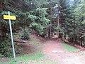 2017-07-15 Urlaub Virgental und Zell am See (137).jpg