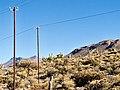 20170808 Bolivia 1471 (37979549981).jpg