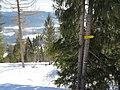 2018-01-27 (122) Skigebiet Mitterbach am Erlaufsee.jpg
