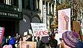 2018 San Francisco Women's March (9315).jpg
