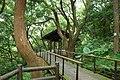 333, Taiwan, 桃園市龜山區龜山里 - panoramio (64).jpg