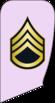 8- IRIADF-SGM.png