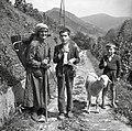 80- letna Marija Bevk na poti iz Cerkna v Ravne. Z vnukom sta v Cerknem kupila ovco 1954.jpg
