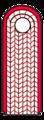 9a Brandmeister Mecklenburg-Vorpommern.png