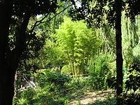 A. Tschechovs Garden, Jalta.jpg