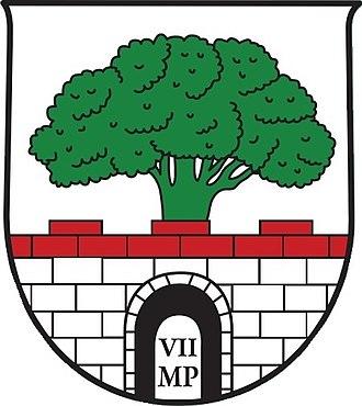 Fachhochschule - Wappen von Puch bei Hallein