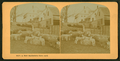 A New Hampshire farm yard, from Robert N. Dennis collection of stereoscopic views 6.png