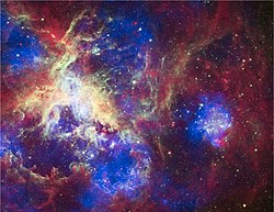 A New View of the Tarantula Nebula.jpg