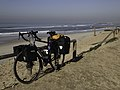 A bike on the beach (39629231811).jpg