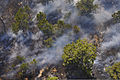 A burning section of forest land can be seen during the Black Forest Fire near Colorado Springs, Colo., June 12, 2013 130612-Z-UA373-182.jpg
