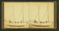 A couple and their sailboat, on dry land, by T. E. M. White.png