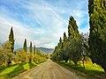 A passeggio nella campagna di Rignano sull'Arno.jpg