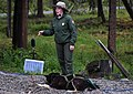 A short ranger talk precedes a demonstration run during a program in the Denali kennels (90572531-005e-4321-ab31-616a31a8b60c).jpg