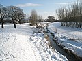 A snowy scene at The Oaks (6) - geograph.org.uk - 1655553.jpg