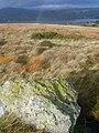 Above Ullswater - geograph.org.uk - 1563419.jpg