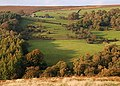 Across the valley to Oaks Farm - geograph.org.uk - 591811.jpg