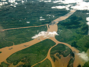 Paraná Delta - Aerial view of the Lower Delta, north of Buenos Aires