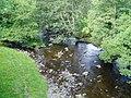 Afon Alwen, Bettws Gwerfil Goch - geograph.org.uk - 243135.jpg