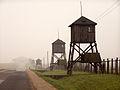 Alians PL KL Majdanek Lublin,10 10 2008,PA100050.jpg