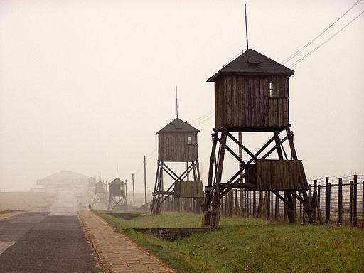 Alians PL KL Majdanek Lublin,10 10 2008,PA100050