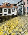 Amarante, Portugal (49104619867).jpg