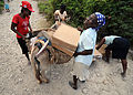 An elderly Haitian woman is assisted in loading her shelter packages on the back of her donkey in Port-au-Prince, Haiti 100224-N-HX866-011.jpg