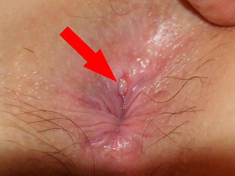 Извращения  Порно фото бесплатно эротические секс фото