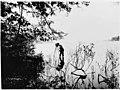 Anders Wilse and camera in Lake Washington, ca 1900 (MOHAI 6425).jpg
