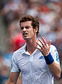 Andy Murray Why (3).jpg
