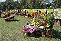 Annual Flower Show - Agri-Horticultural Society of India - Alipore - Kolkata 2013-02-10 4684.JPG