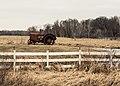 Antique in Field, Harris, MN (33581203421).jpg