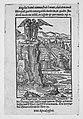 Apocalypsis S. Ioannis- Die Offenbarung S. Johannis MET MM89883.jpg