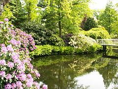 Arboretum Trompenburg PICT0340