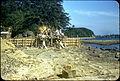 Ashiya-machi, Onga-gun, Fukuoka Prefecture - Builders.jpg