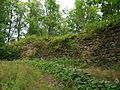 Asti ordulinnuse müürid 01.JPG