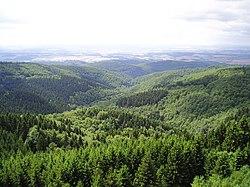 Ausblick vom Grossen Knollen (Turm) - panoramio.jpg