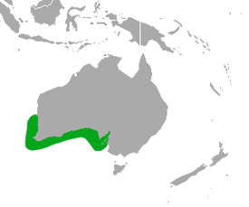 Australian Sea Lion area.png