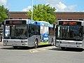 Autobus ataf (Foggia).JPG