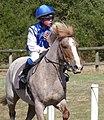 Automne, Pony racing, Rennes 2019.jpg