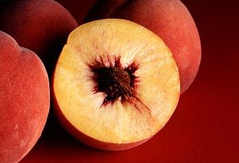 English: Autumn Red peach. Français : Pêches E...