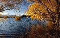 Autumn at Lake Tekapo NZ (16) (8671226696).jpg