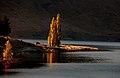 Autumn at Lake Tekapo NZ (5) (8671249510).jpg