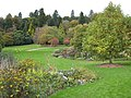 Autumn colour in the gardens at Killerton House - geograph.org.uk - 1010510.jpg