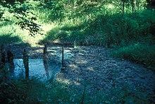Boones lick state historic site
