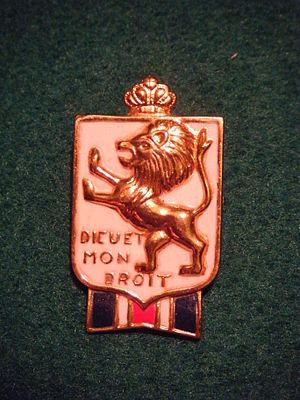 British War Relief Society - BWRS lapel pin