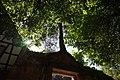 Bad Herrenalb - Klosterkirche - Paradies - Torbogen mit Kiefer von Osten 3.jpg